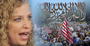 2013_InfoWars_schultz-wasserman-tea-party