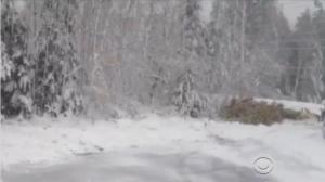2013_TruNews_Snow