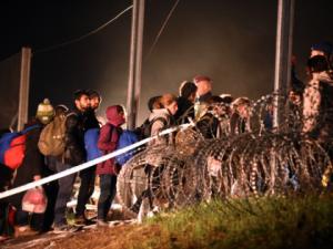 2016_Breitbart_Germany_Refugees_420x315