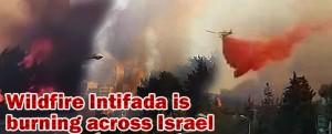 2016_debka_fire_haifa_israel